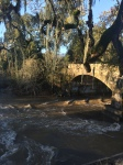 The Napa River at the Zinfandel Lane Bridge south of St. Helena: fish passage barrier no more!