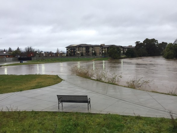 The Napa River spills into the Bypass at the Oxbow for the 1st time! Photo by Charles Newman